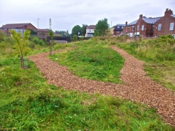 Work on Levenshulme Community Orchard 4