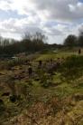 SACV and FotFL volunteers work on new community orchard, Abbey Hey