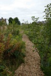 chipping-on-orchard-paths-2