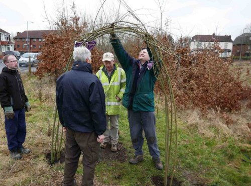 Constructing willow arch