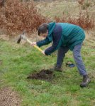 preparing-holes-for-willow-arch-2