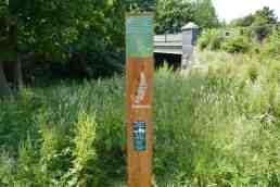 Foxglove post