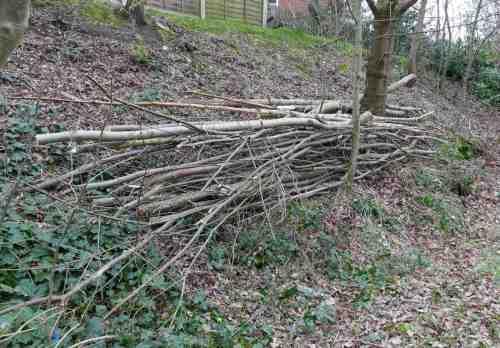 Habitat pile from cut wood