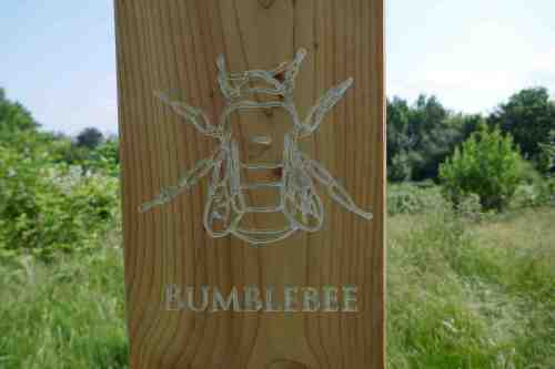 Bumblebee carving