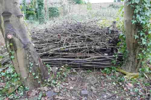 Habitat pile